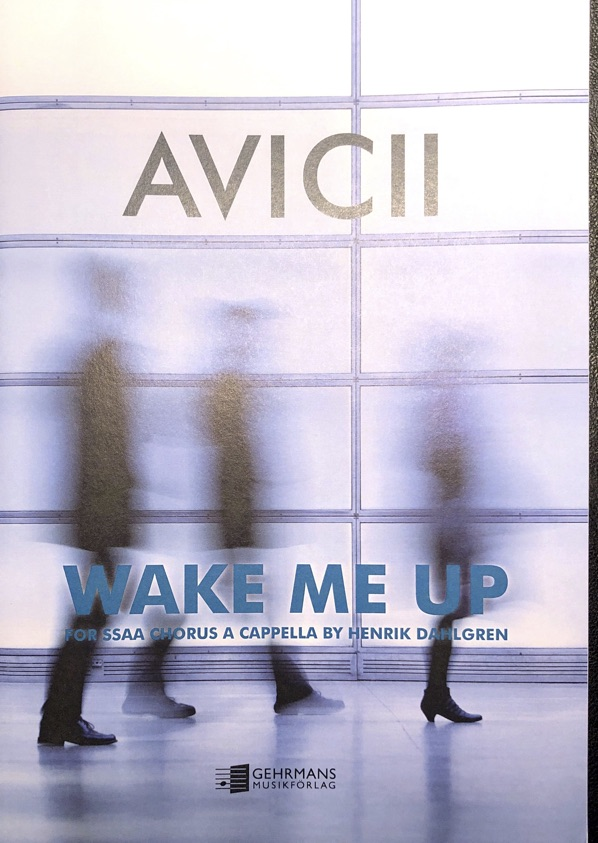 AVICII: WAKE ME UP (SSAA A CAPPELLA)